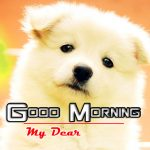 Puppy Lover Good Morning Free Download Images
