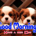 Puppy Lover Good Morning Images