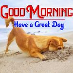Puppy Lover Good Morning Images Free