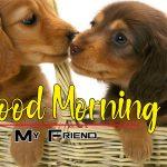 Romantic Puppy Lover Good Morning Pics