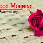 Rose Sad Lover Good Morning Images