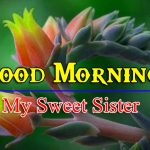 Sister Good Morning Wallpaper Images