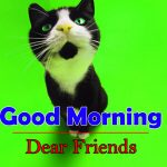 So Funny Good Morning Images Download