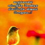 Tamil Whatsapp DP Profile Images Pics Pictures Download