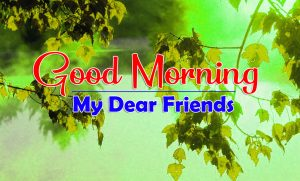 Top HD Amazing Good Morning Images HD Free Download