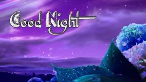 new Beautiful Good Night Images hd