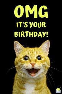 new funny happy birthday images