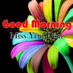 Best Flowers Good Morning Images Pics