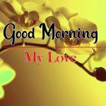 Best Flowers Good Morning Wallpaper Download