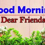 Best Flowers Good Morning Wallpaper Images