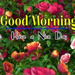 Best Latest Good Morning Photo Wallpaper