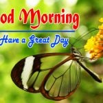 Special Good Morning Images pictures free hd