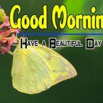 Cute Special Good Morning Wallpaper