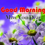 Download Best Flowers Good Morning Images