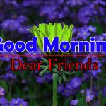 Download Best Flowers Good Morning Pics