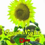 Download Best Good Night Photo Free Download