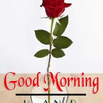 Flower Good Morning Images Download