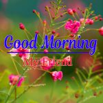 Flower Latest Good Morning Images Photo