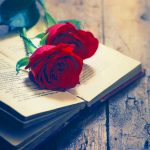 Flower Love Whatsapp Dp Images