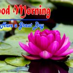 Flower Special Good Morning Hd Free Download