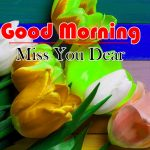 Flowers Good Morning Download Images