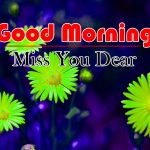 Flowers Good Morning Images Free Download