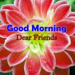 Flowers Good Morning Images Hd