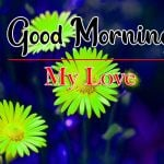 Flowers Good Morning Images Pics