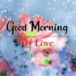 Flowers Good Morning Images Wallpaper
