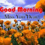 Flowers Good Morning Photo