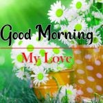 Flowers Good Morning Photo Free Download