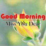 Flowers Good Morning Wallpaper