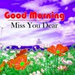 Flowers Good Morning Wallpaper Hd