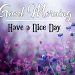 Free Download Good Morning Images pics hd