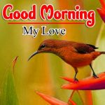 Good Morning Download Wallpaper