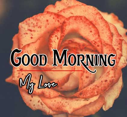 Best Good Morning Images HD Pics Download