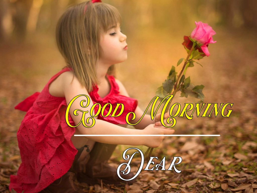 Best Good Morning Images HD Pics pictures Download