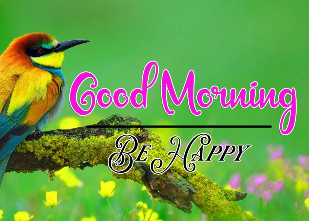 Best Good Morning Images Wallpaper pics Download Latest