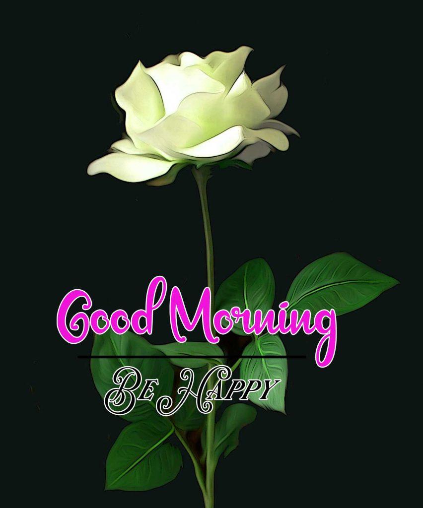 Best Good Morning Images Wallpaper Free Download