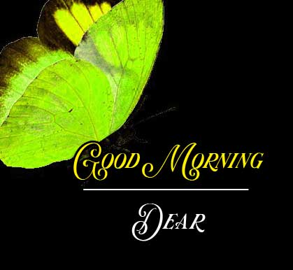 Best Good Morning Images Pics Wallpaper Download for Whatsapp