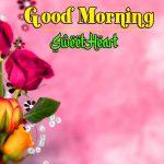 Good Morning Images Free Photo
