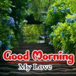 Good Morning Images Photo Wallpaper