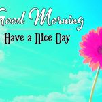 Good Morning Photo Images Pics