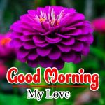 Good Morning Photo Pics Pictures