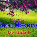 Good Morning Picrtures Pics