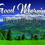 Good Morning Pics Free Downloa d