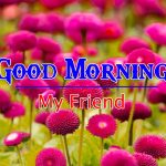 HD FRee Good Morning Images