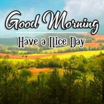 Hd Free Download Good Morning Images