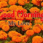Hd Free Download Good Morning Pics