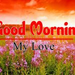 Hd Free Good Morning Images Wallpaper